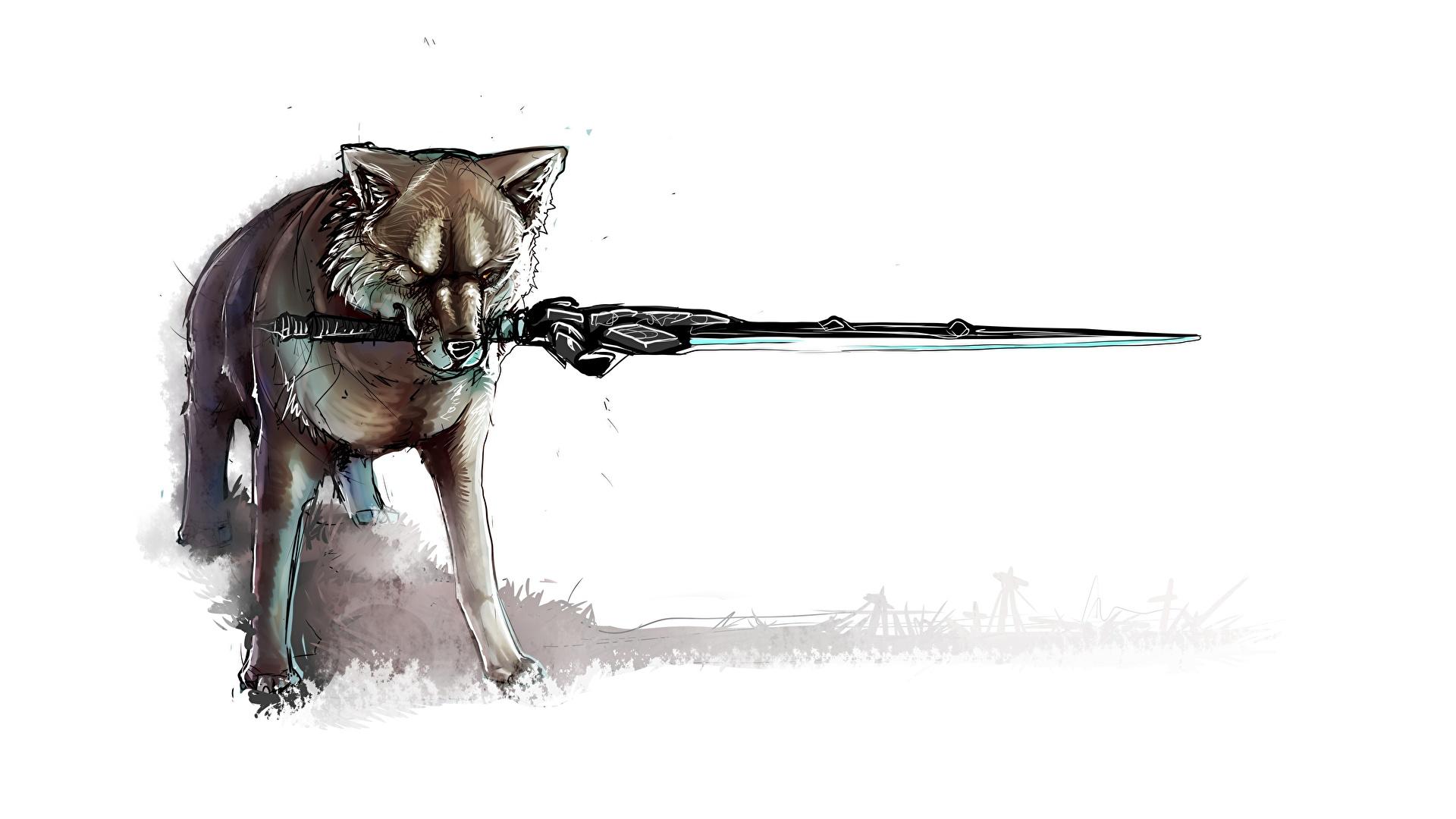 Fotos Dark Souls Schwert Fan Art Sif The Great Grey Wolf