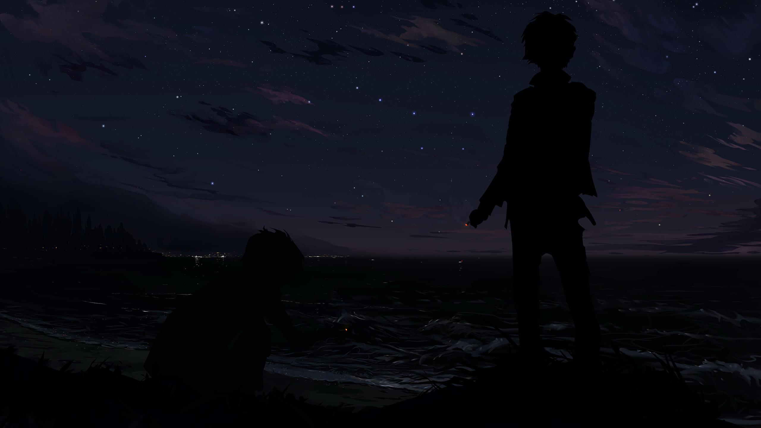 壁紙 2560x1440 夜 少年 シルエット アニメ ダウンロード 写真