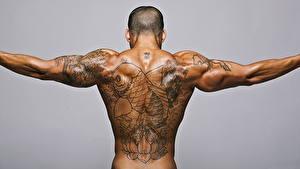 Hintergrundbilder Mann Rücken Tätowierung