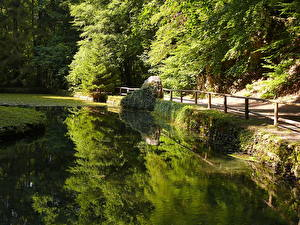 Fotos See Ungarn  Natur