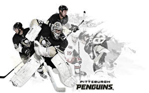 Picture Hockey Sport