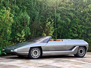 Bilder Lamborghini  Autos