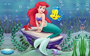 Hintergrundbilder Disney Arielle, die Meerjungfrau