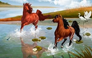 Bilder Spirit – Der wilde Mustang