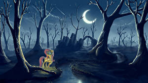 Bilder My Little Pony Gothic Fantasy Halbmond Mond Bäume