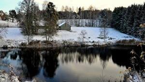Hintergrundbilder Jahreszeiten Winter Litauen Schnee Bäume  Natur