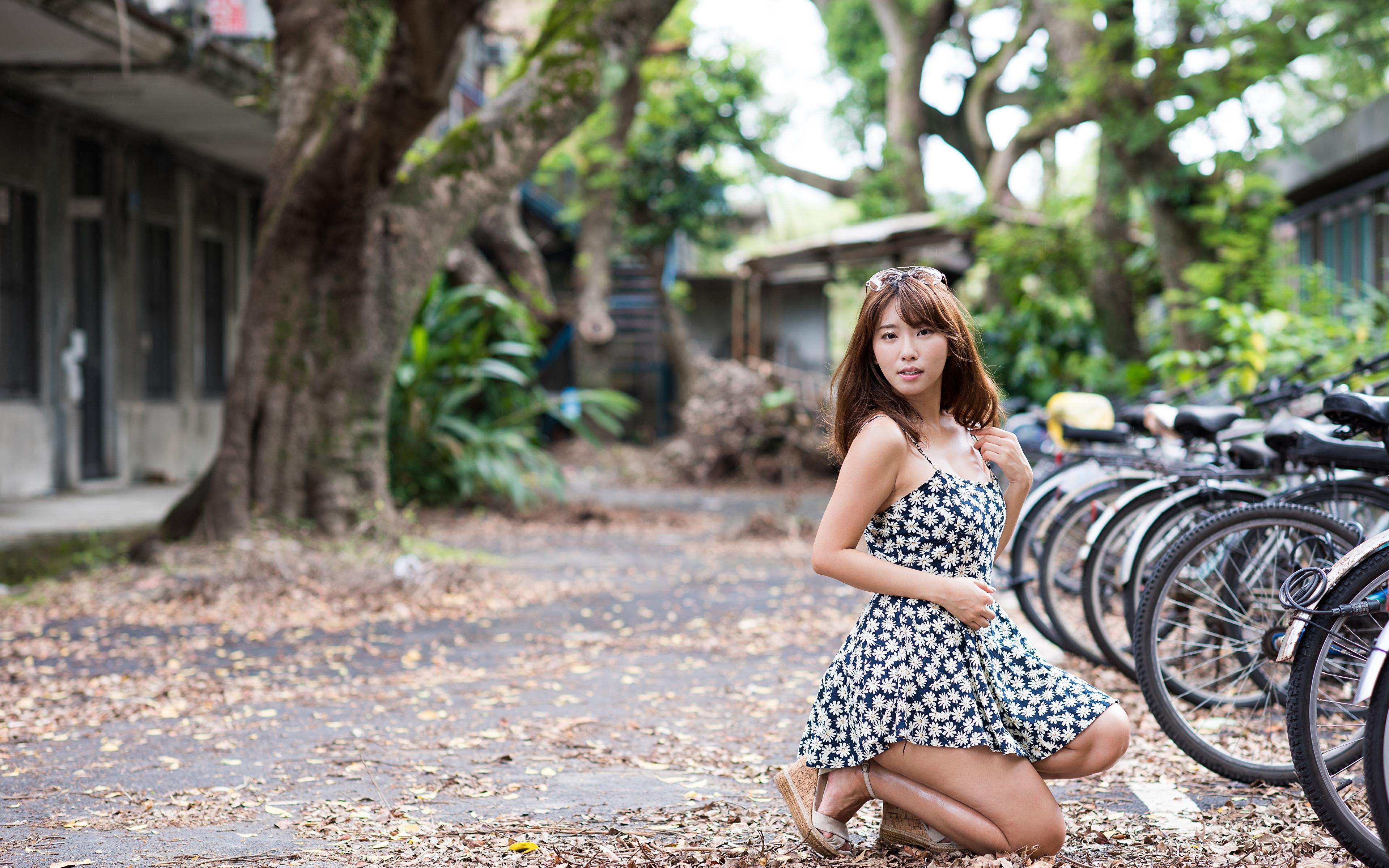 3840x2400 Asiático Cabello castaño Bokeh Vestido Bicicleta mujer joven, mujeres jóvenes, asiática, bicicletas, pelo castaño, fondo borroso Chicas