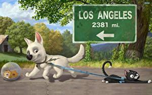 Fotos Disney Bolt Hunde Katze Animationsfilm 3D-Grafik