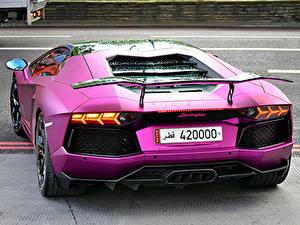 Fotos Lamborghini Hinten Violett Luxus aventador lp700-4