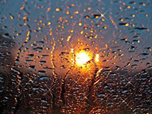 Bilder Glas Tropfen Nass Sonne