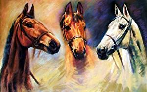 Bilder Pferd Malerei Kopf ein Tier