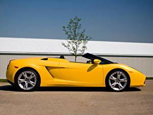 Fotos Lamborghini Gelb Seitlich Luxus 2006 i Gallardo LP560-4 spyder