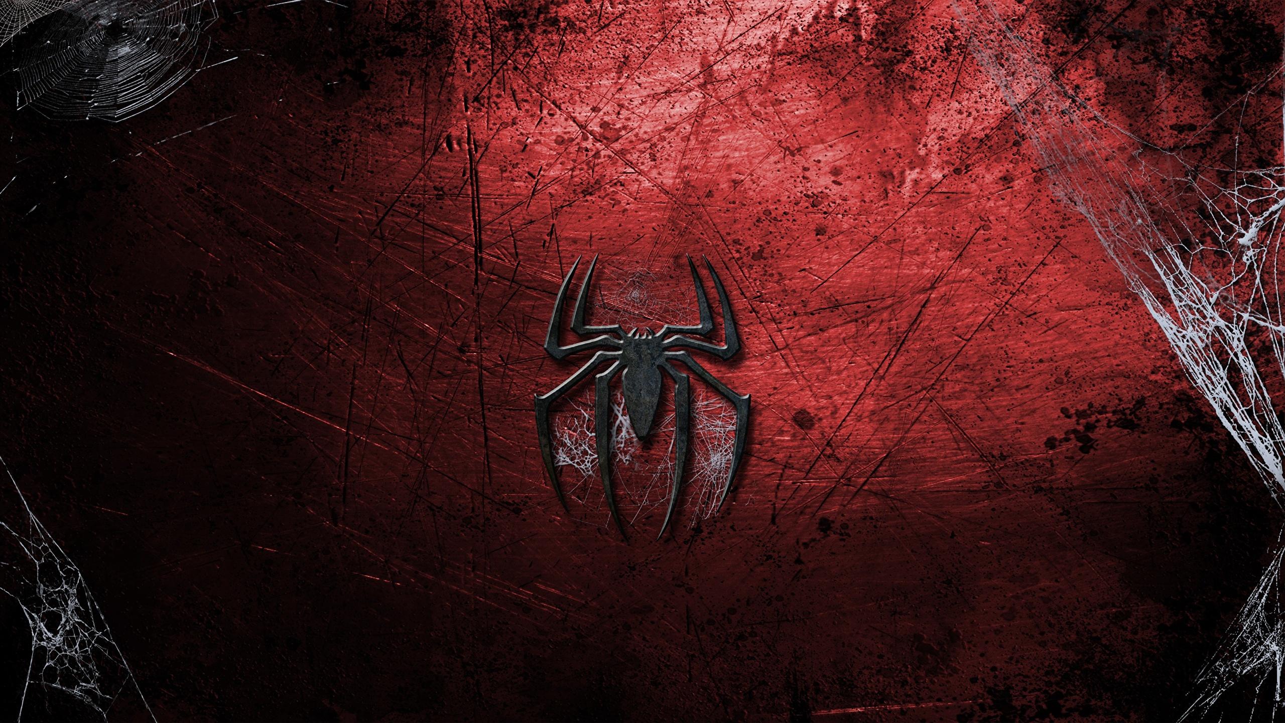 Wallpaper Spider Man Logo Emblem Movies 2560x1440