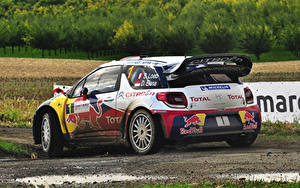 Hintergrundbilder Citroen Hinten DS3 automobil Sport
