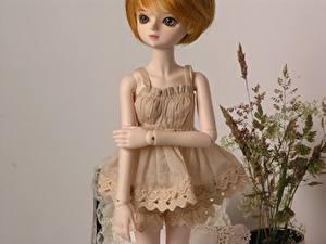 Fonds d'écran Jouets Petites filles Poupée Les robes