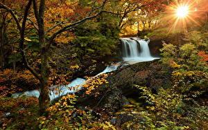 Bilder Wasserfall Wälder Herbst Sonne Natur