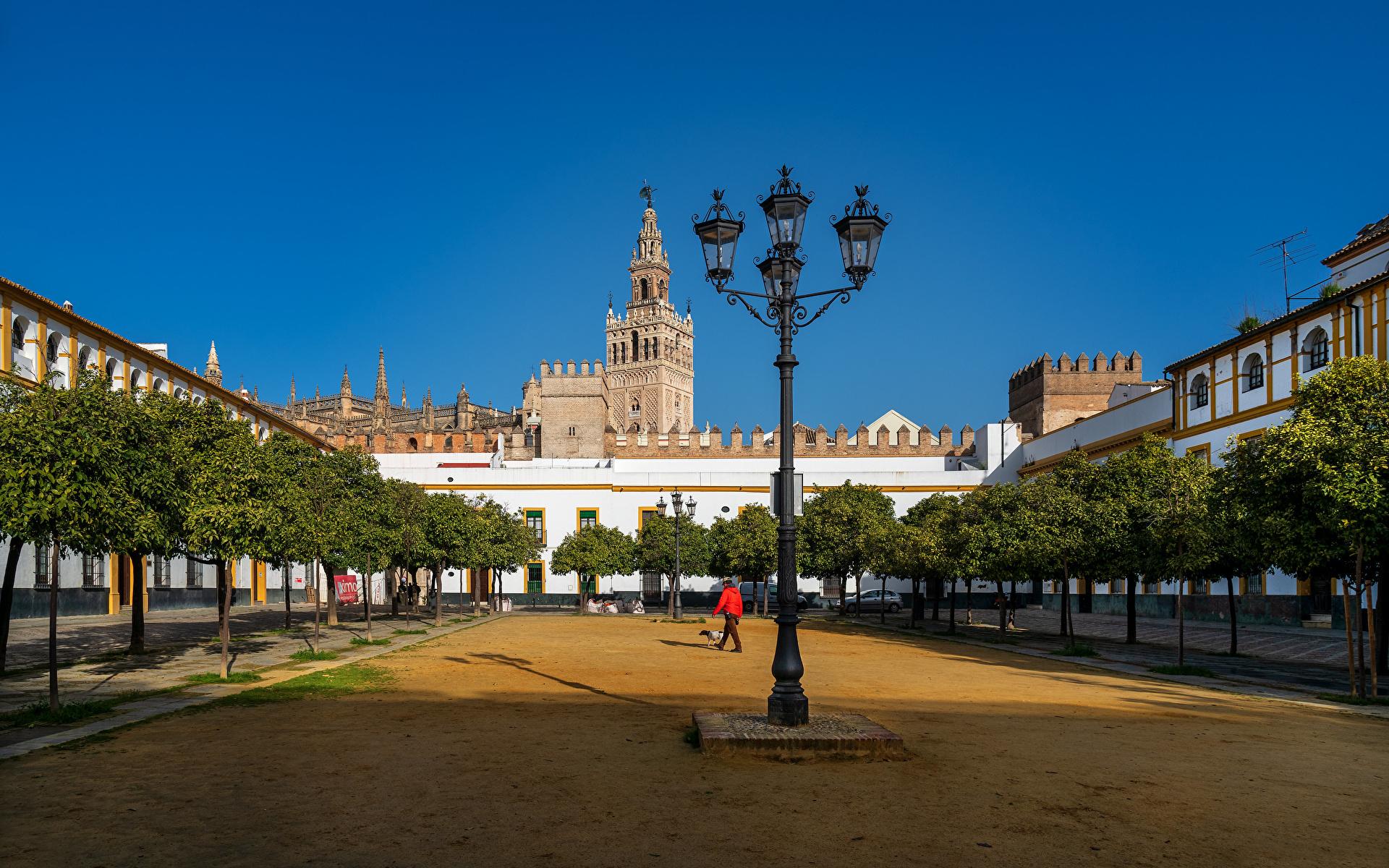 Picture Spain Barrio de Santa Cruz, Sevilla Street lights Trees Houses Cities 1920x1200 Building
