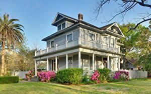 Fotos USA Gebäude Herrenhaus Strauch Gras Texas Houston