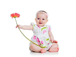 Fonds d'écran Gerbera Petites filles Les robes Enfants
