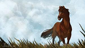 Hintergrundbilder Spirit – Der wilde Mustang Pferde Gezeichnet Himmel Wolke