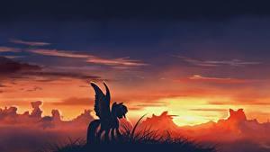 Hintergrundbilder My Little Pony Sonnenaufgänge und Sonnenuntergänge Animationsfilm