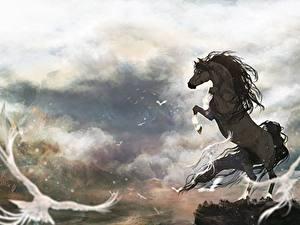 Bilder Pferde Spirit – Der wilde Mustang Tiere