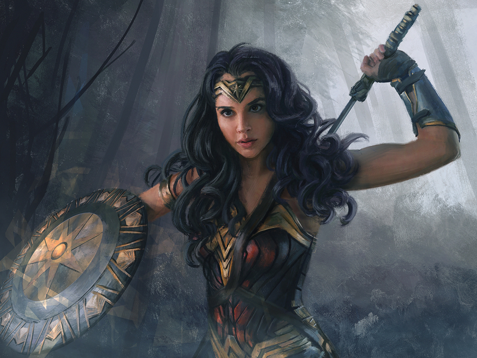 Images Wonder Woman 2017 Film Gal Gadot Shield Brunette