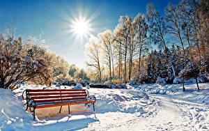 Bilder Jahreszeiten Winter Park Schnee Bäume Bank (Möbel) Sonne