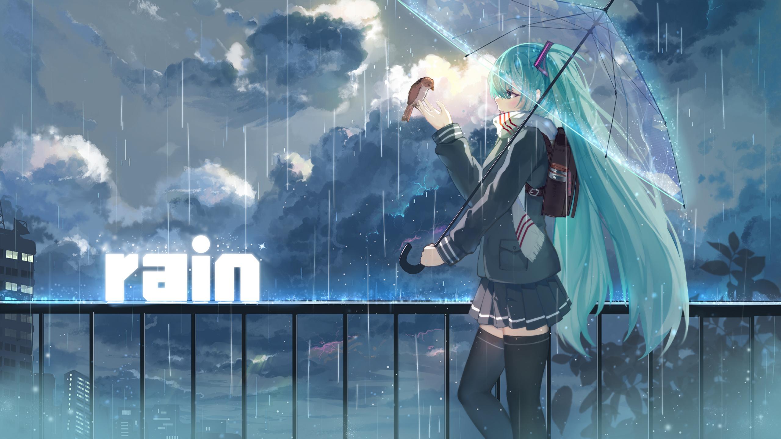 壁紙 2560x1440 ボーカロイド 雨 初音ミク 傘 アニメ ダウンロード 写真
