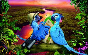 Hintergrundbilder Rio Papageien 2 Tiere