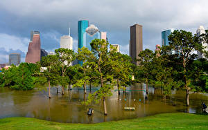Bilder USA Wolkenkratzer Teich Bäume Texas Houston