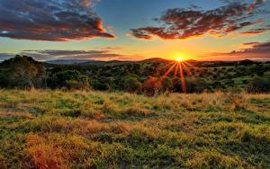 Bilder Felder Himmel Sonnenaufgänge und Sonnenuntergänge Gras Lichtstrahl Sonne