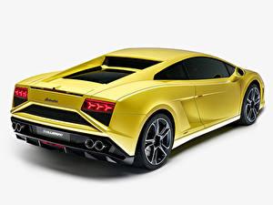 Bilder Lamborghini Hinten Gelb Luxus Auto Scheinwerfer Gallardo LP560-4 2013