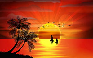 Fotos Schiff Meer Insel Sonnenaufgänge und Sonnenuntergänge Vektorgrafik Palmengewächse Sonne