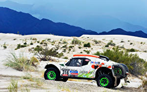 Fotos Wüste Tuning Seitlich Rallye Buggy Dakar 2014 automobil Sport