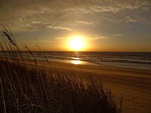 Fotos Sonnenaufgänge und Sonnenuntergänge Meer Küste Sonne Gras Strände Natur