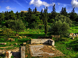 Fotos Griechenland Ruinen Bäume Gras Strauch Acropolis Athens Natur