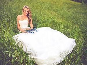 Hintergrundbilder Brautpaar Gras Blondine Sitzend Kleid Mädchens