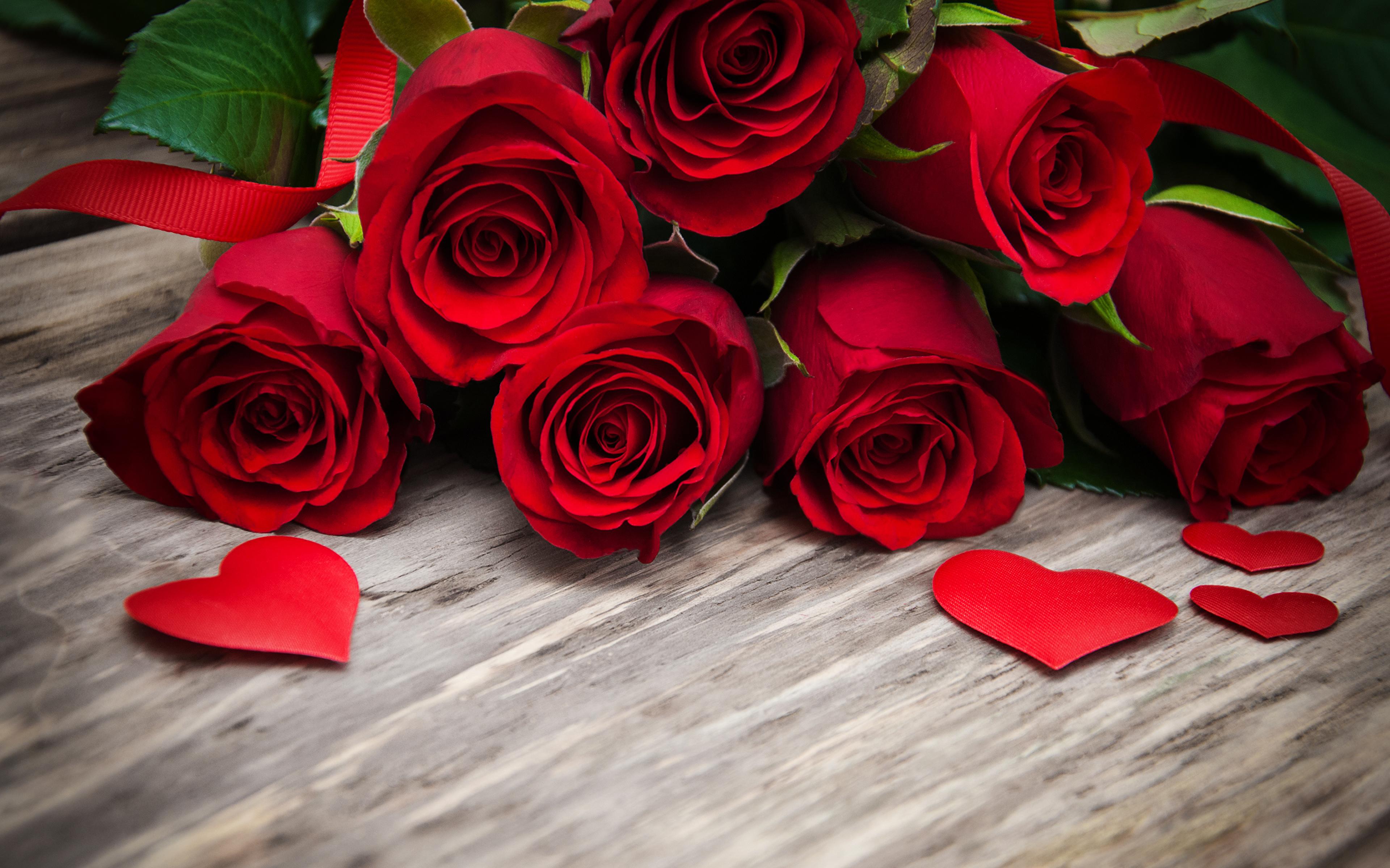 Desktop Wallpapers Heart Red Rose Flowers Boards 3840x2400