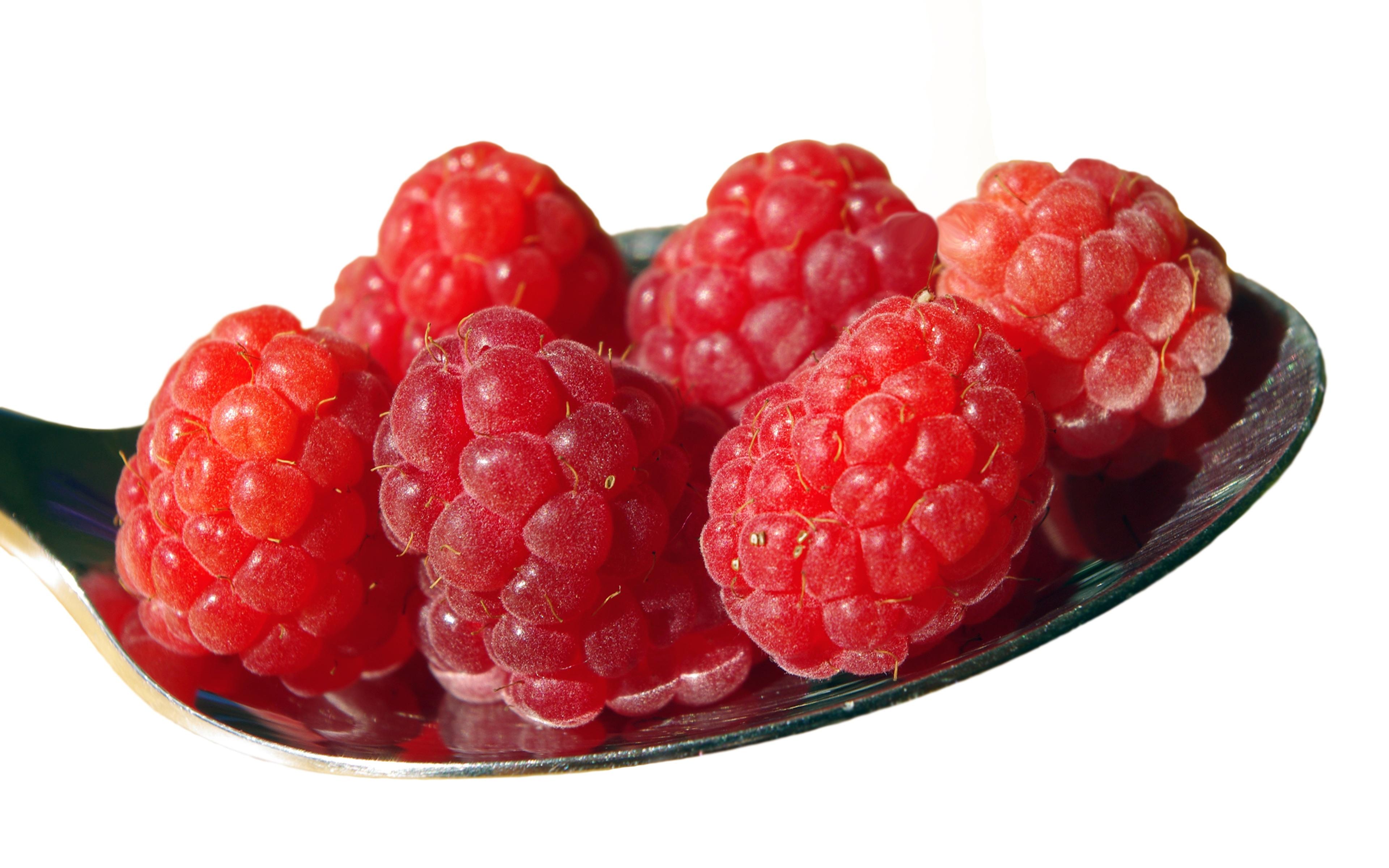 Bilder von Rot Himbeeren Beere Löffel Lebensmittel Nahaufnahme Weißer hintergrund 3840x2400 das Essen hautnah Großansicht