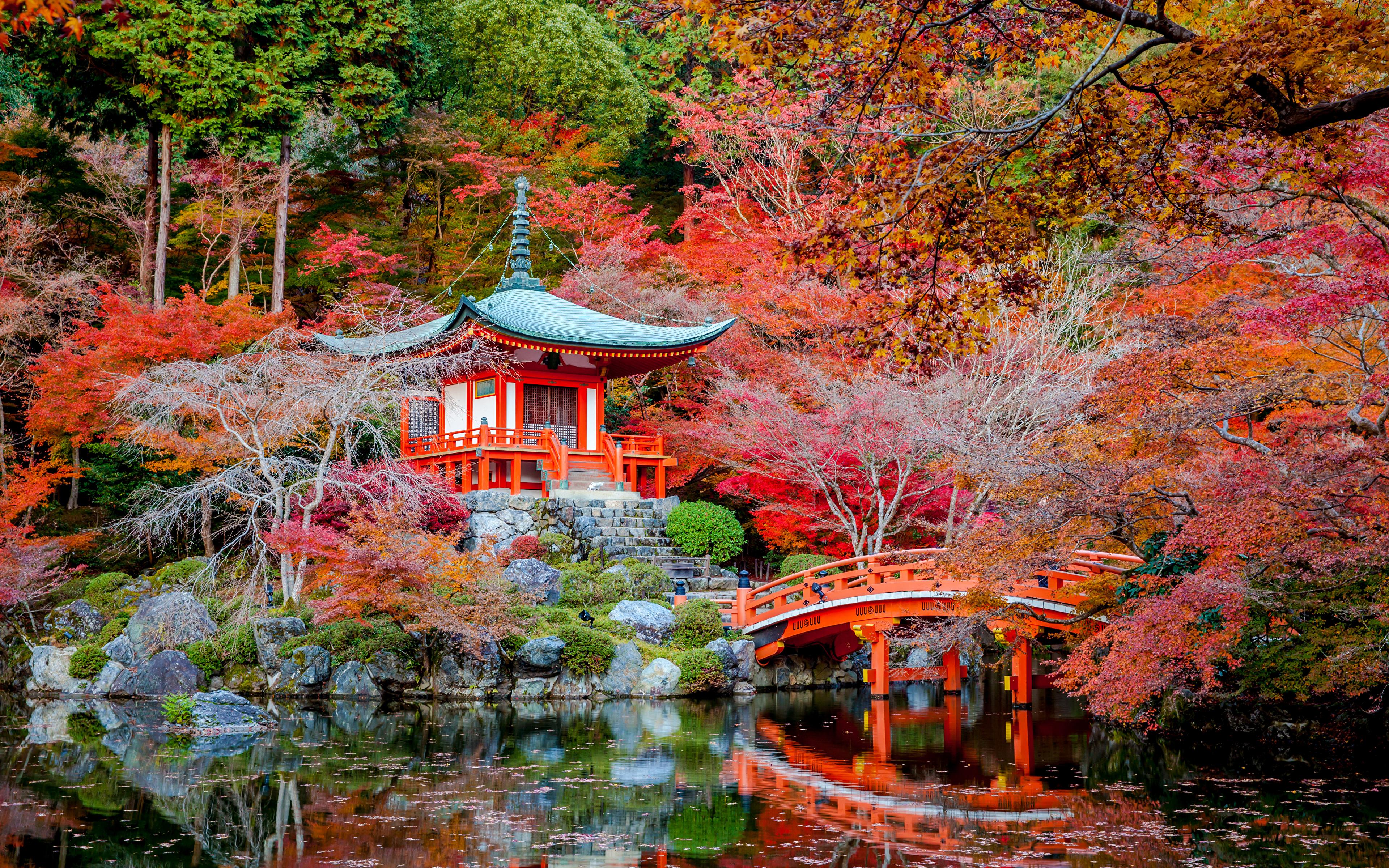 Desktop Wallpapers Kyoto Japan Autumn Nature Bridges Pond Parks Pagodas Trees 3840x2400 bridge park