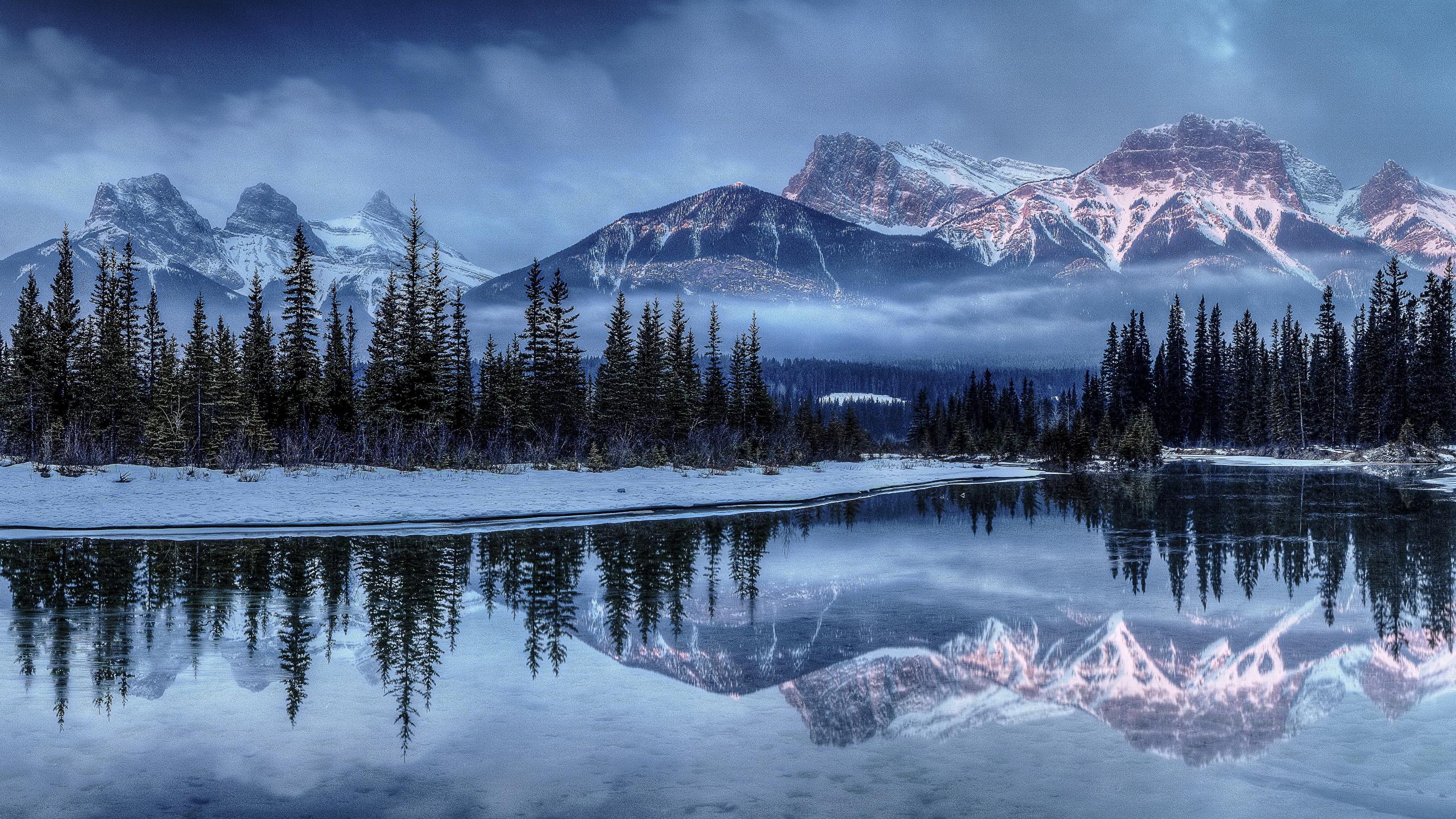 壁紙 2560x1440 季節 冬 山 風景写真 湖 トウヒ属 雪 自然 ダウンロード 写真