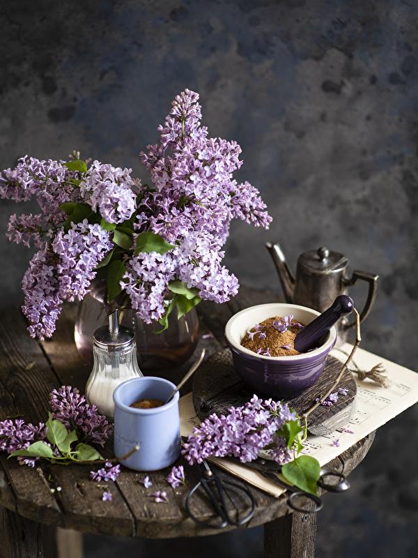 Fotos Blumen Syringa Ast Becher Stillleben 600x800 für Handy Blüte Flieder