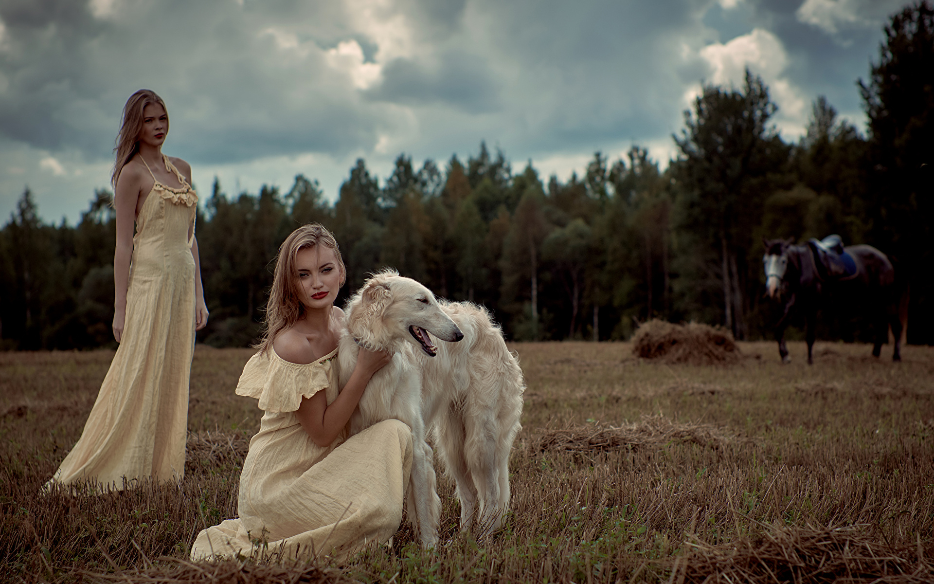 Picture Sighthound dog Russian hunting sighthound 2 young woman Animals frock 1920x1200 Dogs Two Girls female animal gown Dress