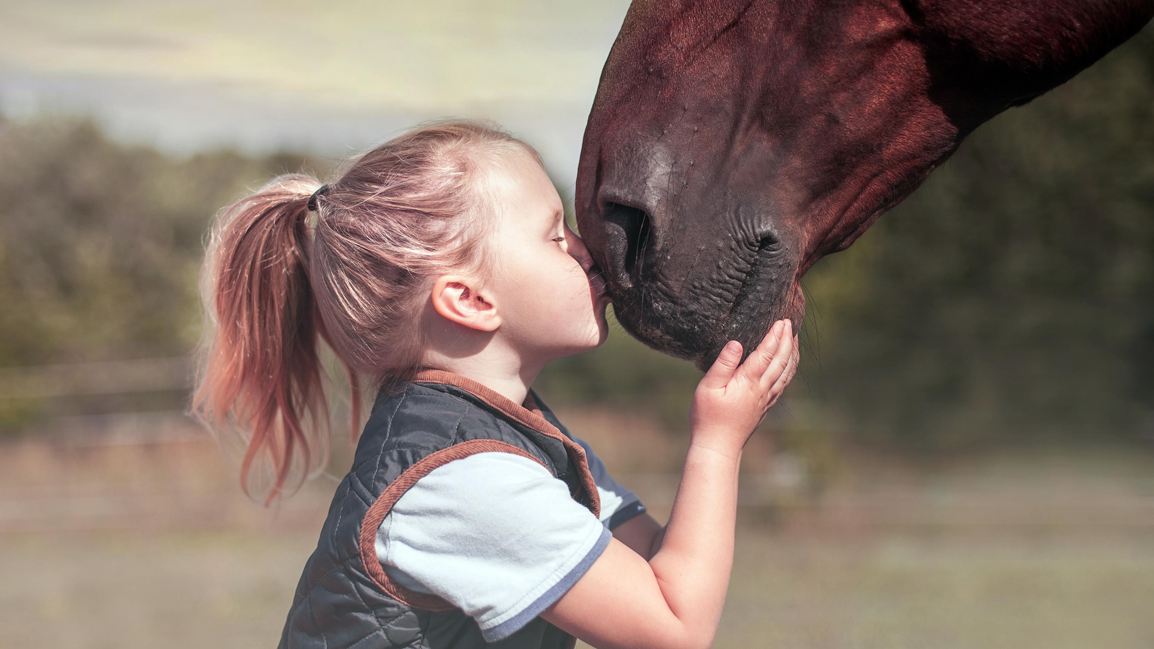 Wallpaper Little Girls Horses Child Kisses 3840x2160
