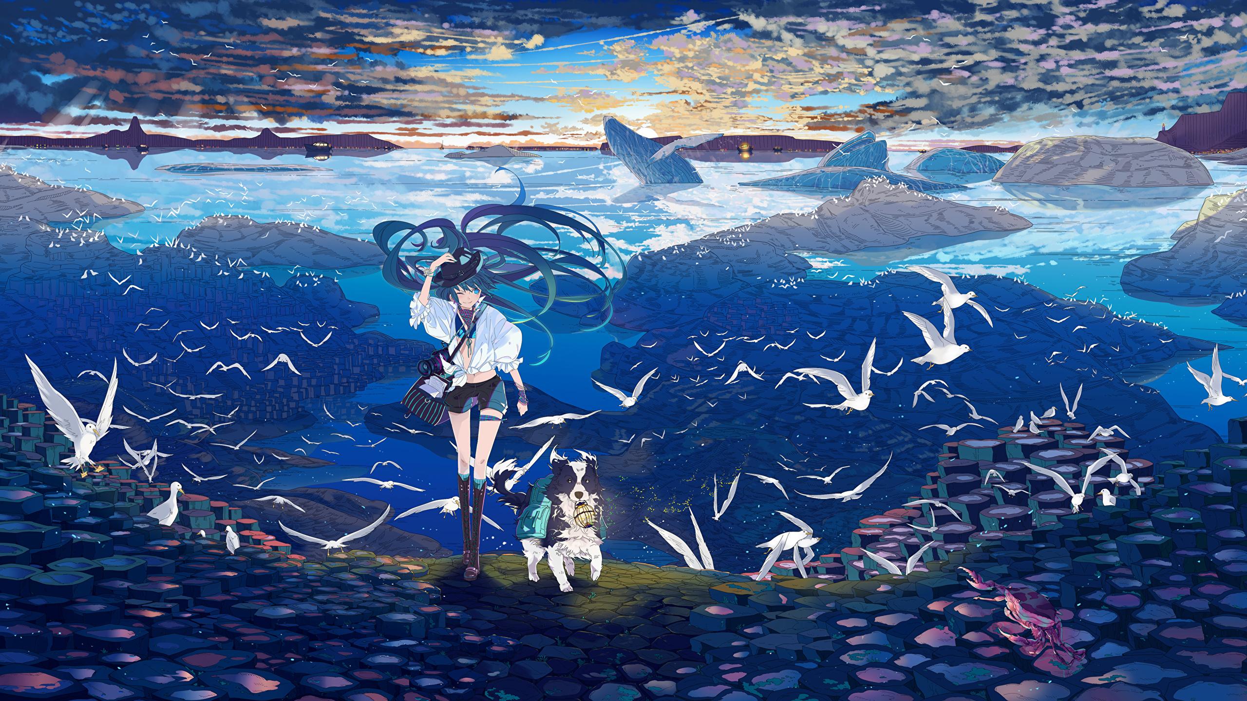 壁紙 2560x1440 ボーカロイド カモメ アニメ 少女 ダウンロード 写真
