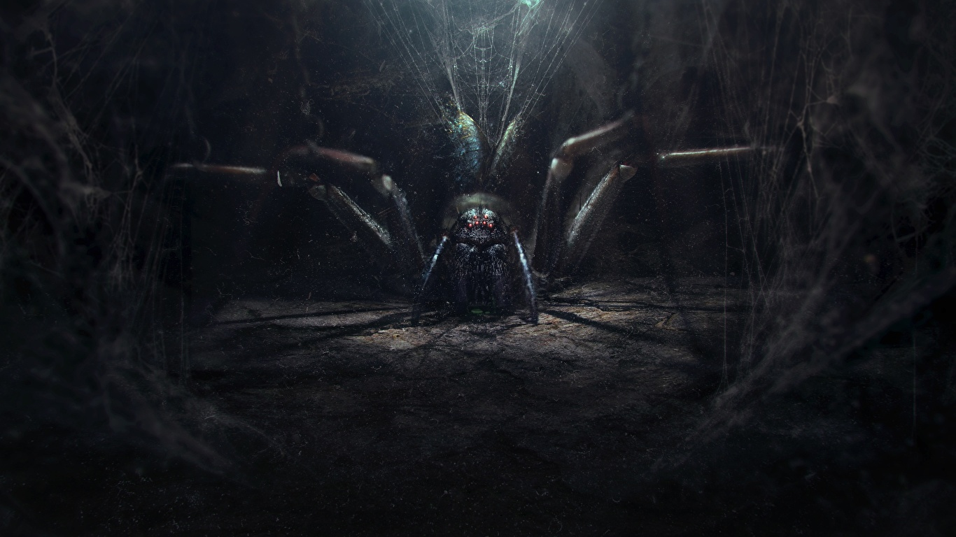 Foton Filmtrilogin om Härskarringen Sagan om konungens återkomst (film) Spindlar Bokillustrationer Fantasy Filmer 1366x768 spindel film