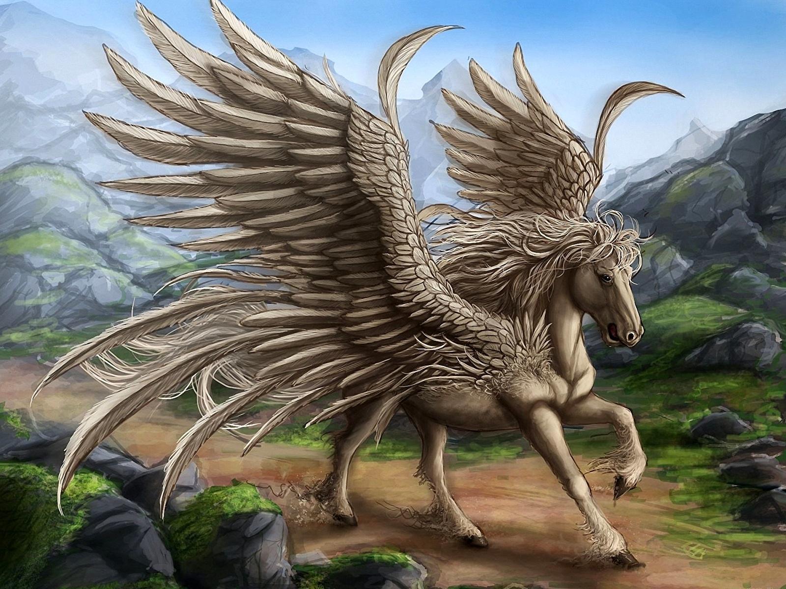 Image Pegasus Fantasy Magical Animals 1600x1200