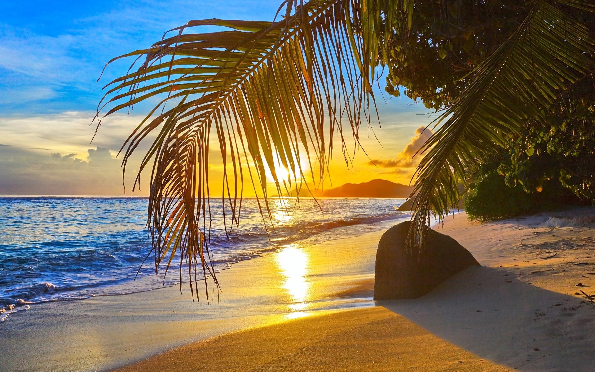 fotos von strand meer natur palmengewächse 1920x1200