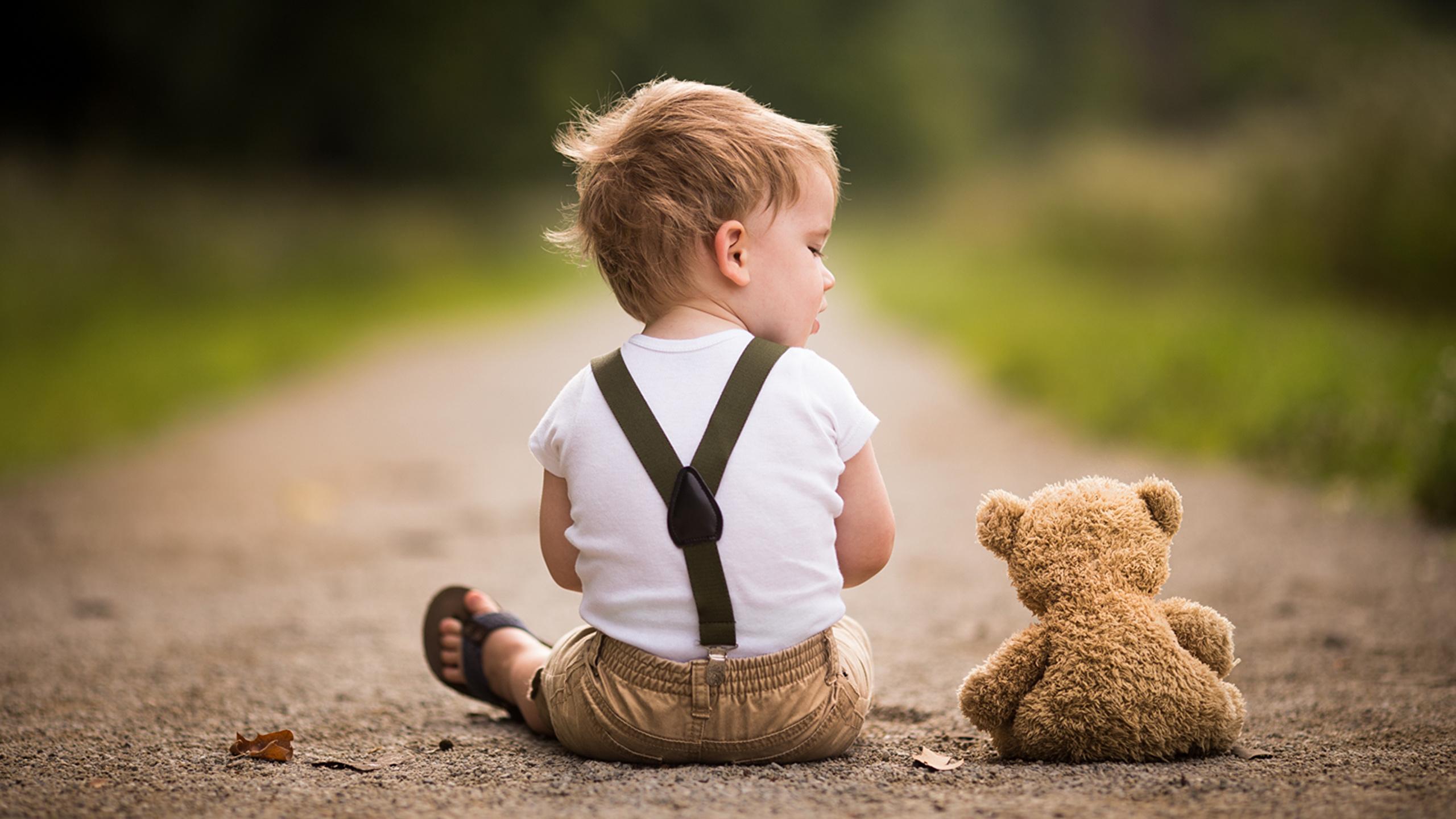 Bilder von jungen Kinder 2 Weg Teddy sitzt Hinten 2560x1440 Junge Zwei Teddybär Knuddelbär sitzen Sitzend